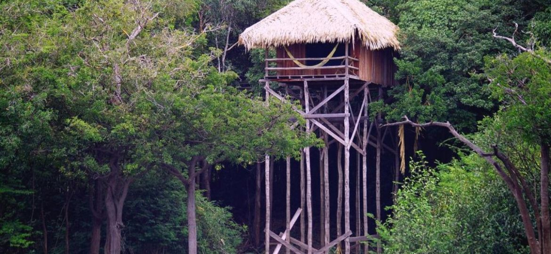 Jungle Hotel in the Amazon
