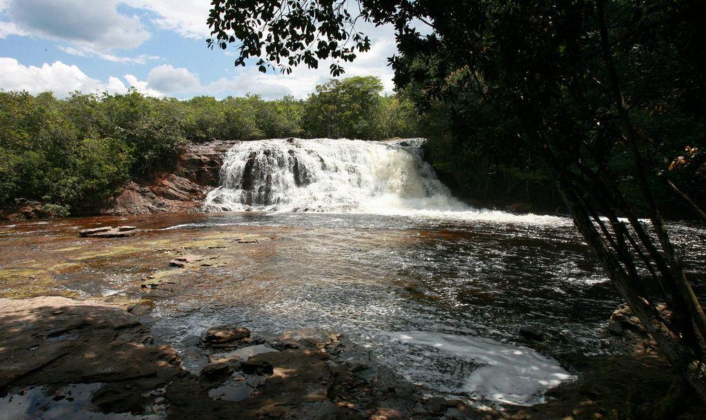 Trips in Amazon Rainforest